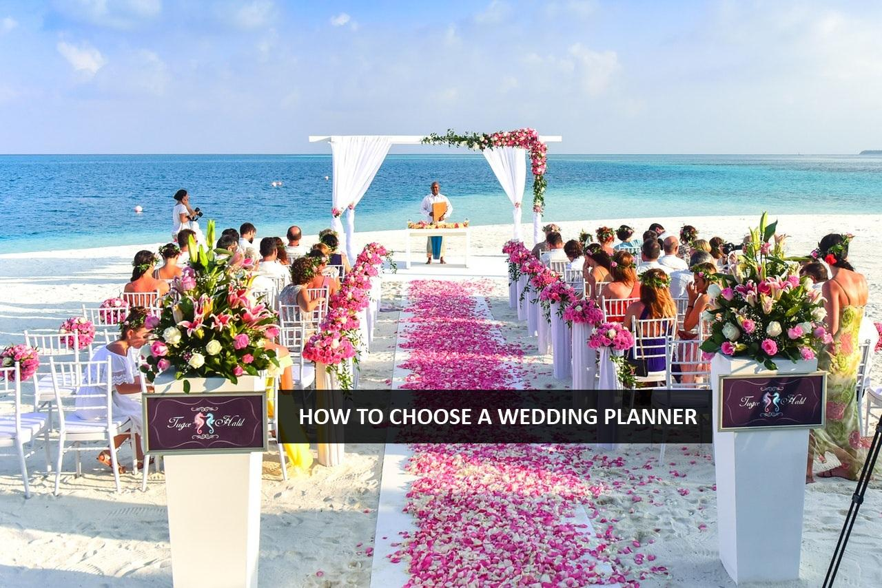 how to choose a wedding planner, wedding planner udaipur, wedding planner jaipur, wedding planner in jodhpur